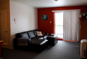 Bel appartement 4 1/2 - Quartier résidentiel - un seul voisin! Saguenay Saguenay-Lac-Saint-Jean image 2