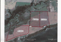 80 Acres Located in Beautiful Gwynne Valley