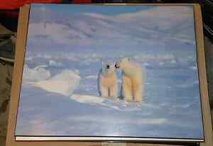 """Wall Art Pictures 16""""x20"""" Cambridge Kitchener Area image 5"""