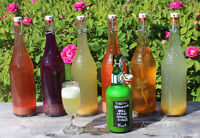 Kombucha Fermenting Workshop