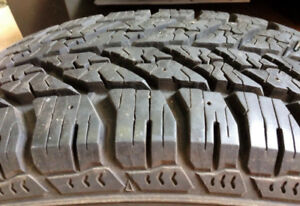 (2) Nokian Normand and (2) Good Year Winter Tires