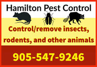 MOUSE RACCOON ANIMAL PEST BEDBUG ROACH REMOVAL CONTROL TREATMENT