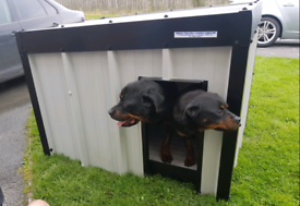 Strong dog kennels made of kingspan insulated chew proof