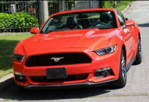 Mustang convertible ecoboost