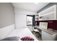 Student Accommodation: Studios from £200 to £290 per week. Student Plaza.
