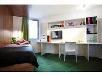 Luxury En suite room zone 1 short and long term!