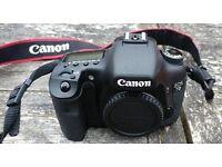Canon EOS 7D Mk1 Plus 3 Lenses Speedlite Flash Bag & More
