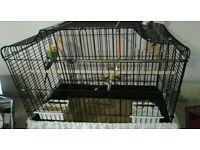 Bird cage buggie cage plus buggie