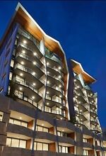 Pet friendly Apartment for rent Newstead Brisbane North East Preview