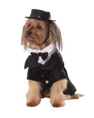 NWT DAPPER DOG Tuxedo Costume with hat Size Medium Halloween Wedding New Year