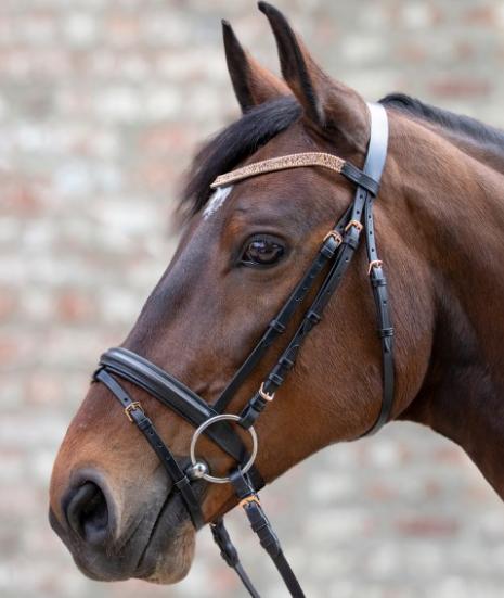 f/ür Holzpferde Funny Horses HKM Gebisslose Trense