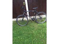 Universal rampage bike for sale £30