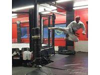 Taekwon-do and MMA (Mixed Martisl Arts) classes in Cheam Surrey / south London