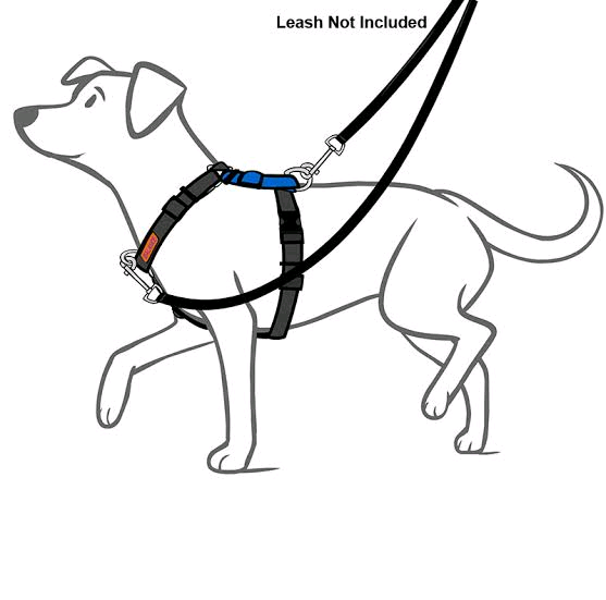 Dog Balance Harness