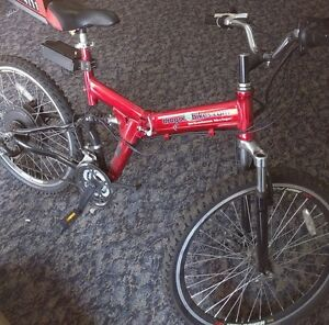 Dragon Mountain eBike **ONLY 1 LEFT**