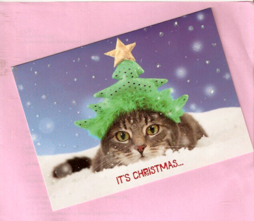 Cat Kitten Tree Hat Glitter Christmas Cards Box of 15*