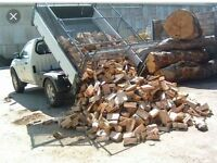 Barnnstored logs £100 3 cubic ASH mix logs