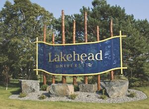 Looking to buy R lot Lakehead parking pass