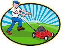 Gardener and Handyman