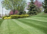 Lawn and Home Maintenance
