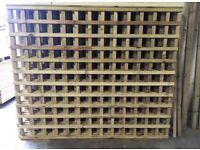 Pressure Treated/ Tanalised Trellis Fence New Panels