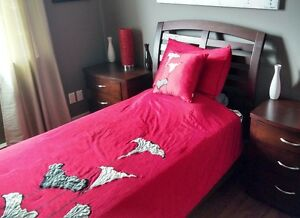 Red Comforter, Two Pillow Shams, & a Throw Pillow