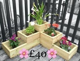 THREE TIER BEDDING PLANTER ONLY £40
