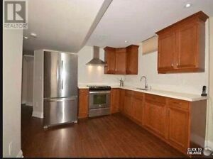 Basement for rent,close to Vaughan Mills and York University.