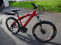 48v Bafang BBS Mid-Drive electric bike