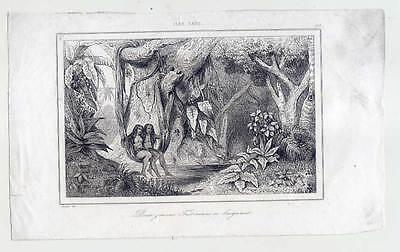 Tahiti-Ozeanien-Ethnologie-Frauen - Stahlstich 1836