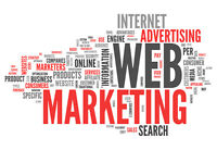 Web Marketing and Advertising for Professionals