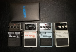 Boss Pedals RV6 Reverb And Delay + Boss NS2 Noise Gate
