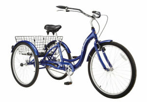 Schwin tricycle