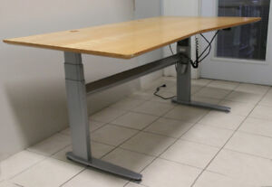 ConSet Motorized Height Adjustable Standing Desk with Wood Top