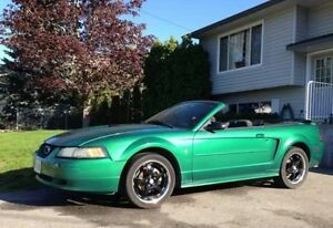 2001 Mustang convertible 3.8L Auto Loaded Only 115K