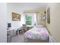 Nice single room in centre ideal for quiet serious students ( minutes walk from tube and Buses )