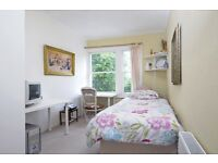 Nice single room in centre ideal for young professionals or students minutes away from tube & buses
