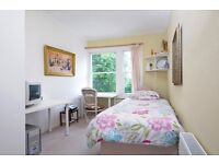 Nice single room in centre HOLLAND PARK AND KENSINGTON Ideal for young professionals or students