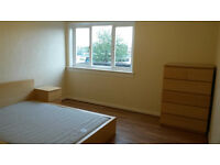huge double room to rent