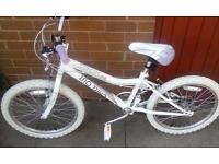brand new!!!girls bike