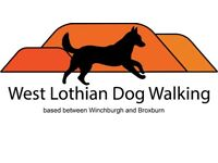 Dog walking/ walker covering Winchburgh and Broxburn £8