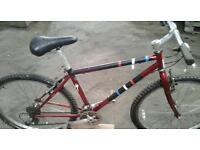 21 Gear Push Bike