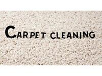 STEAM CARPET CLEANING, PROFESSIONAL CLEANER, AFFORDABLE PRICES