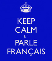 Help You Learn French Fast (All Levels)