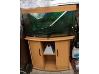 Juwel 180 fish tank and stand