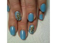 Manicure/Pedicure/Shellac/Nail Art/Gel Polish in Leytonstone