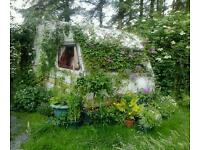 Do you have an empty caravan in your garden or a small room I could rent?