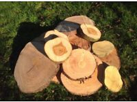 Rustic cake stand log slice natural centre pieces charger plates