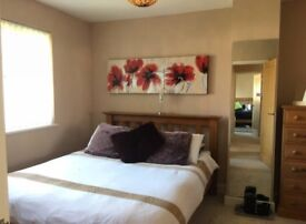 Two modern double rooms in Marston