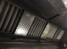 Extractor canopy and fan